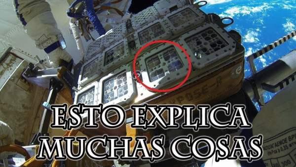 Exponen Seres Vivos al Espacio 533 Días y Sucede Algo Increíble