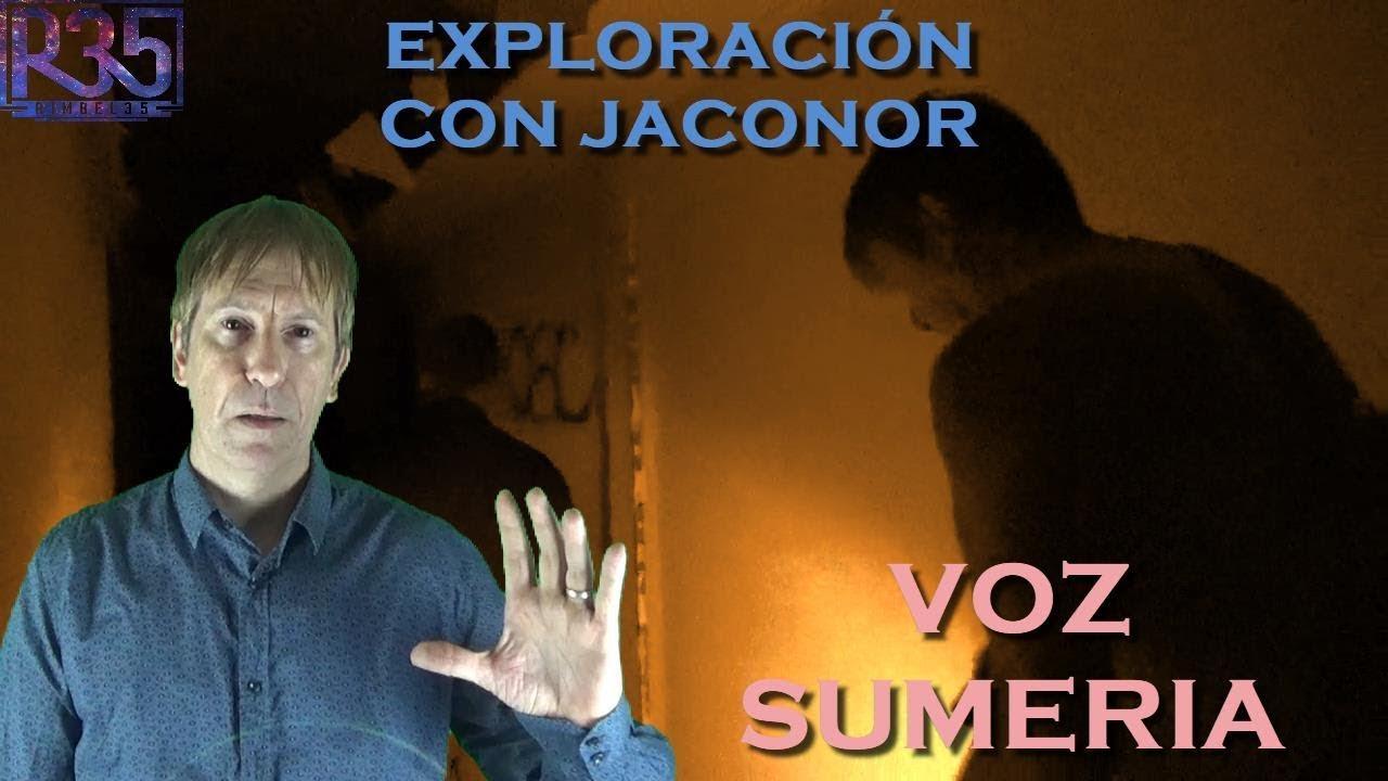 UNA VOZ NOS RESPONDE EN SUMERIO: Experiencia Alucinante con JACONOR