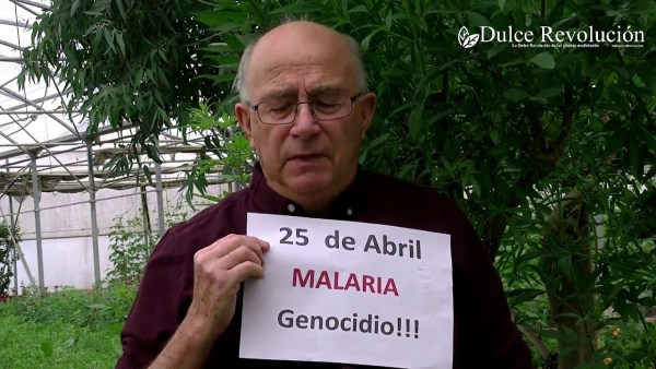 La FARMAFIA prohíbe una planta que cura la malaria. ARTEMISA ANNUA. VIVA PAMIES