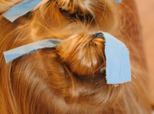 cabelo_3
