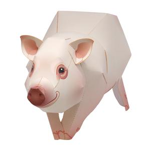 miniature-pig_thl