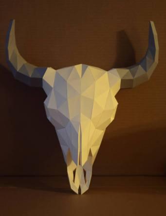 Cráneo de Bisonte
