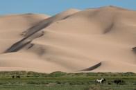 ... Deserto de Gobi, Mongólia