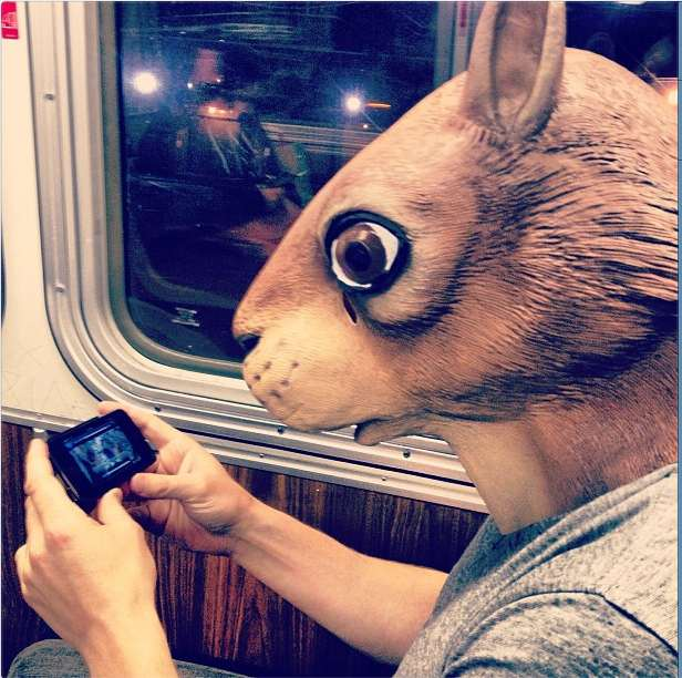 rabbit mask on muni