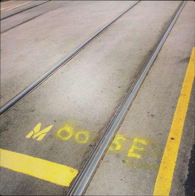 muni new line
