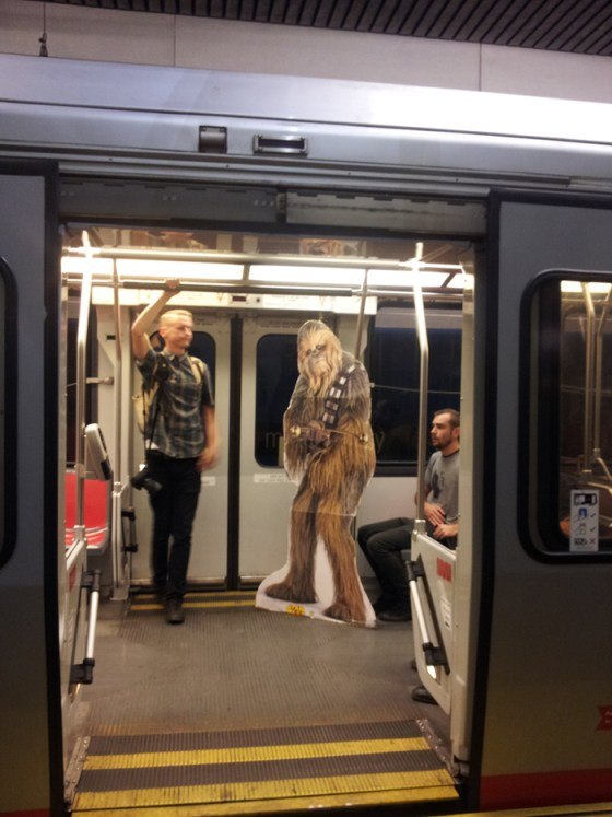 chewie_on_muni
