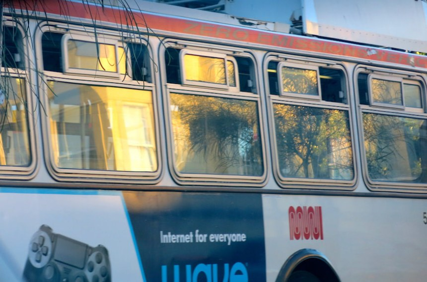 muni reflection torbakhopper