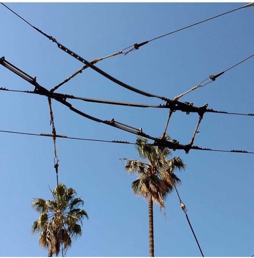 muni wires from tara