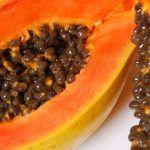 Papaya Samen um Nierenerkrankung, Parasiten, und Zirrhose zu behandeln
