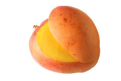 Mango Samen, zum Abnehmen