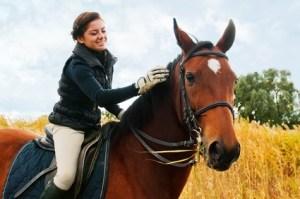 Tiertherapie: Verbessert die körperliche und geistige Gesundheit