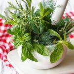 Natur und Natürliche Medizin: Erleichterung und Heilung