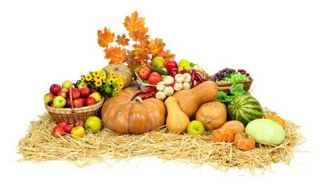 Lebensmittel für eine bessere Gesundheit