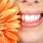 Die Pflege der Zähne