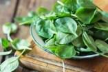 Vegetarische Ernährung: Bio und ungekocht