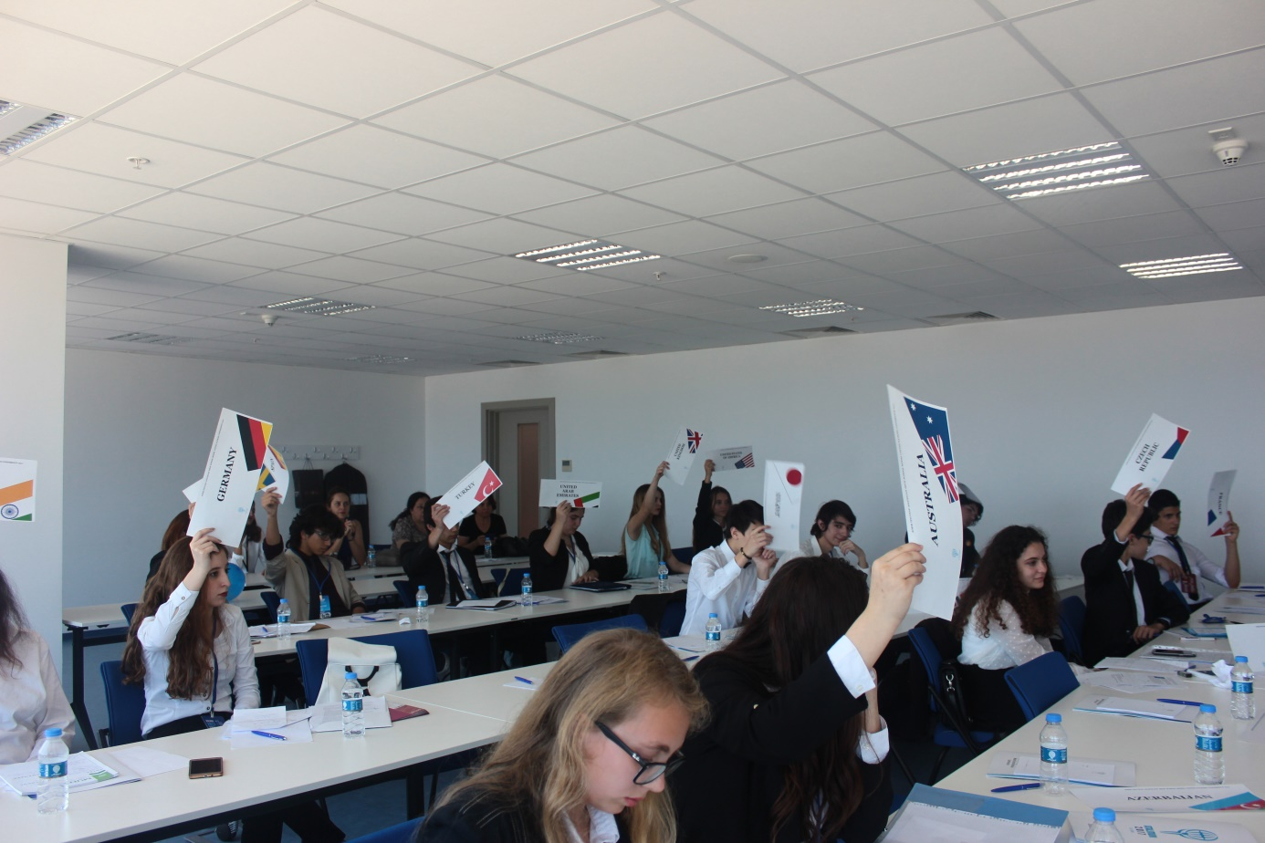 Social Committees In Mun And Their Functions Written by Şevval ALPARSLAN