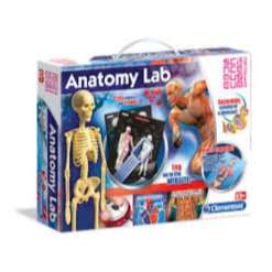 Clementoni Anatomian labra