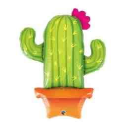 Foliopallo kaktus 99 cm