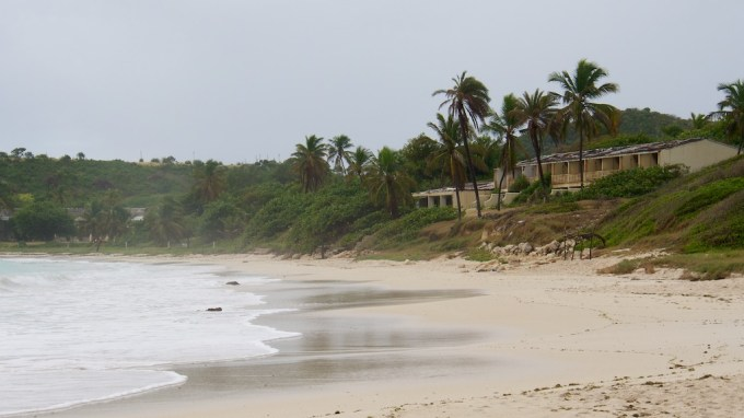 2 wrecked beachfront buildings peer out from behind palm trees into a grey and overcast afternoon