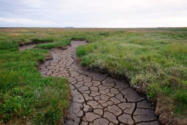A dried up river bed runs through a lush green meadow