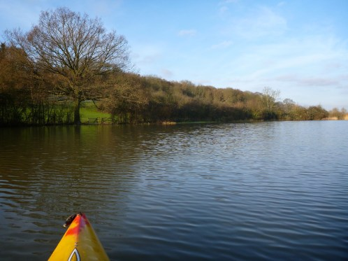 Front of canoe in flooded field, points at tree by hill
