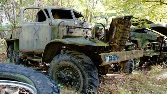 Badly stripped Russian military trucks rusting peacefully in an overgrown yard