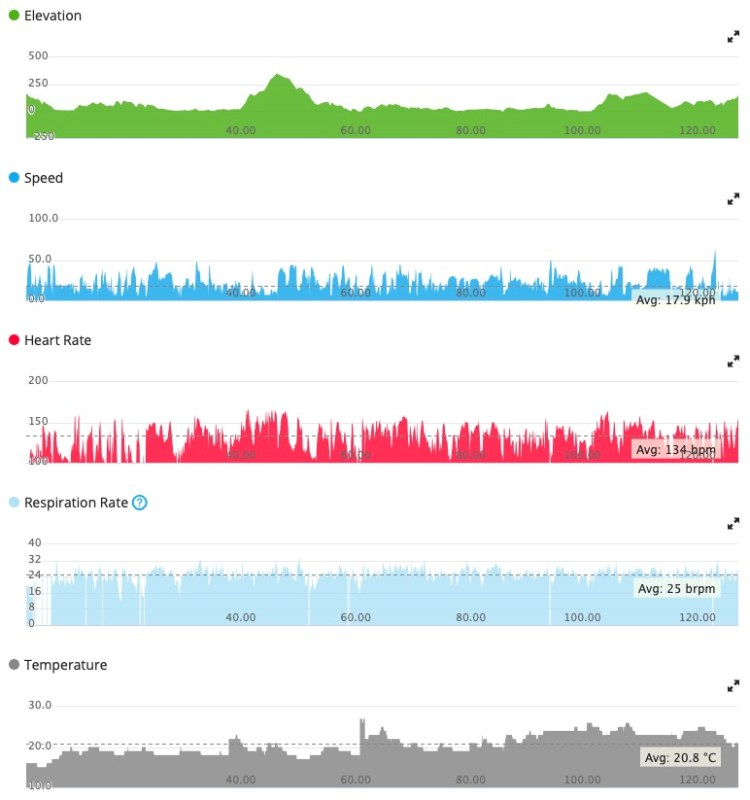 Page of statistics clipped from Garmin Connect