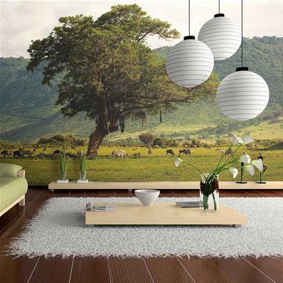papier peint panoramique paysage terre d afrique ngoro