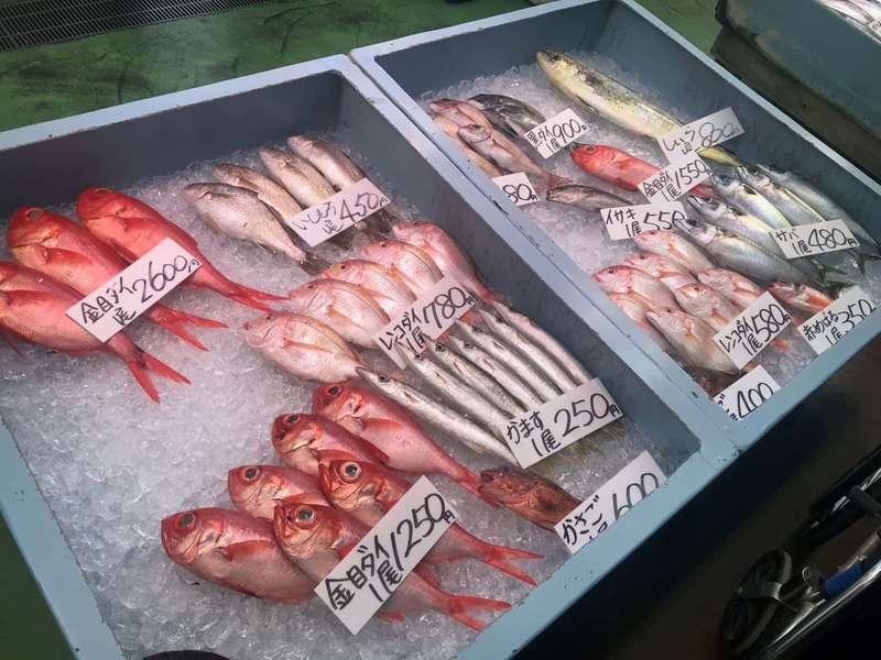 御前崎海鮮なぶら市場のお土産
