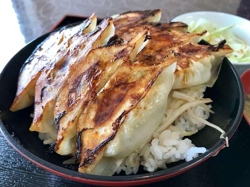 かさご餃子の浜松餃子丼