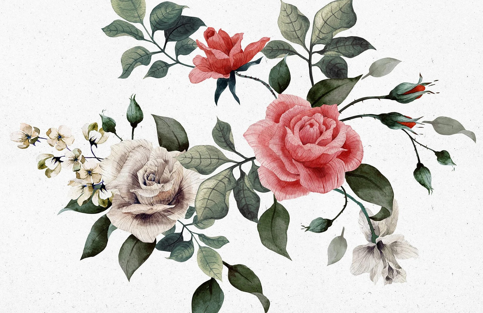 Vintage Red And White Rose Wallpaper Murals Wallpaper
