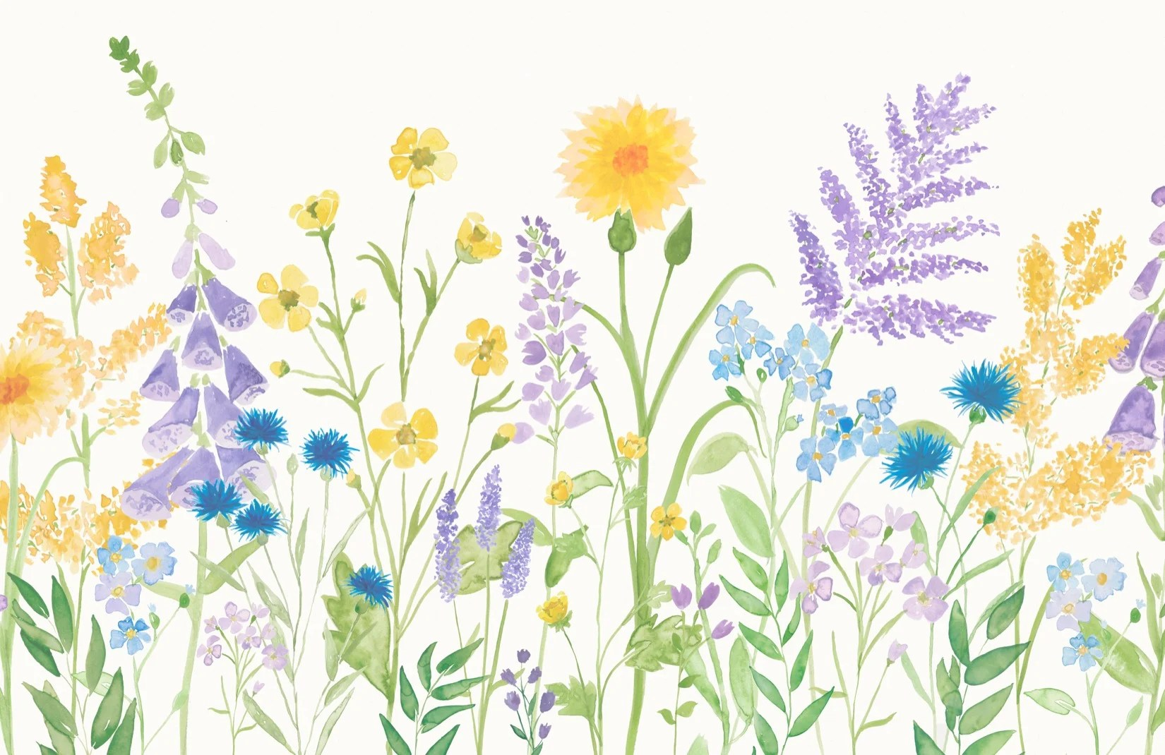 Wildflower Wallpaper Bright Floral Design Muralswallpaper