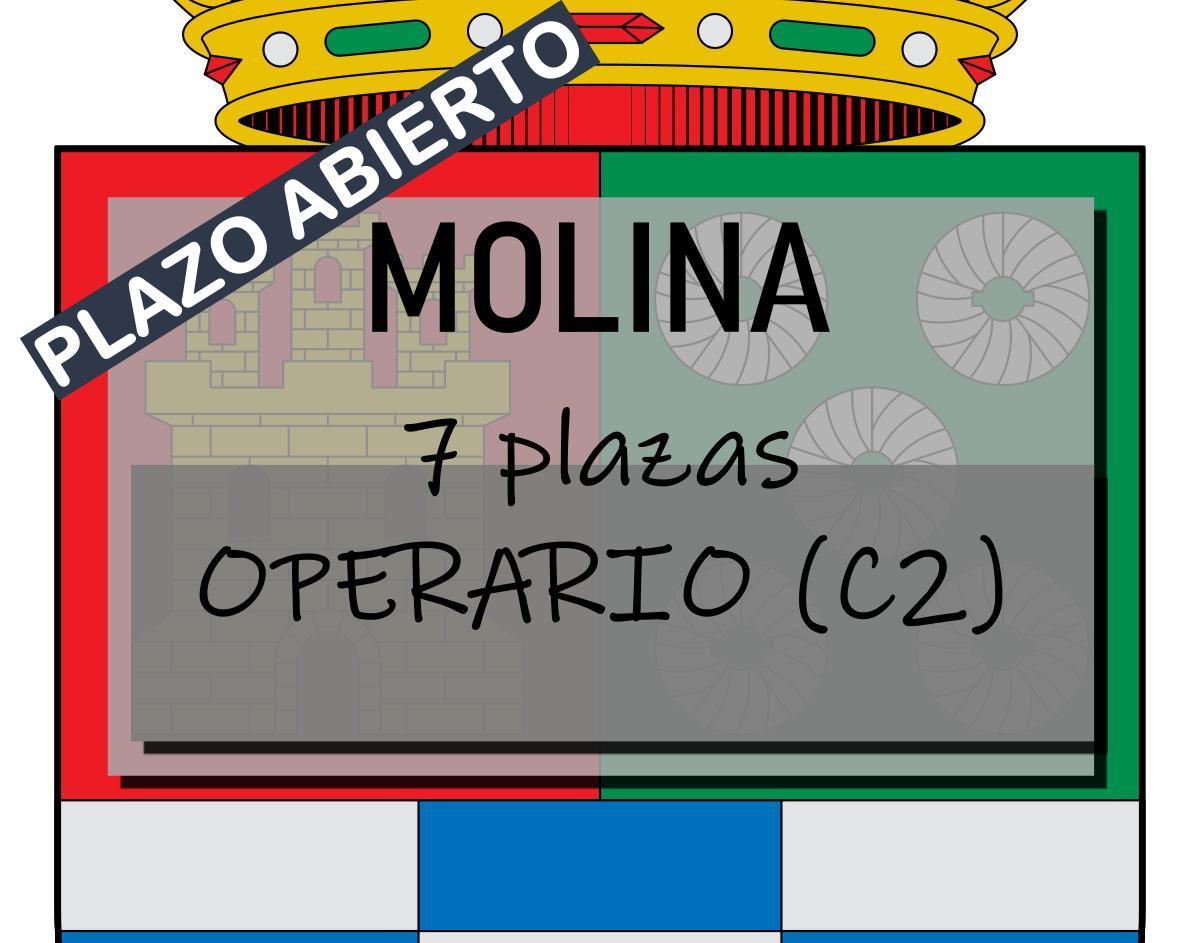 7 plazas operario Molina
