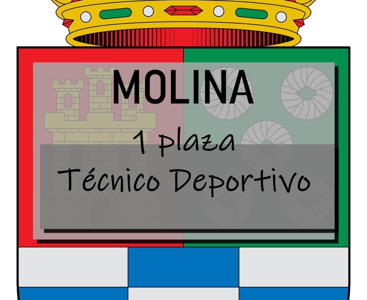 1 plaza Técnico Deportivo Molina