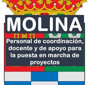 Personal para la puesta en marcha de proyectos en Molina