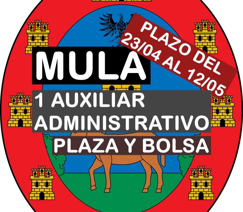 1 plaza Auxiliar Administrativo en Mula