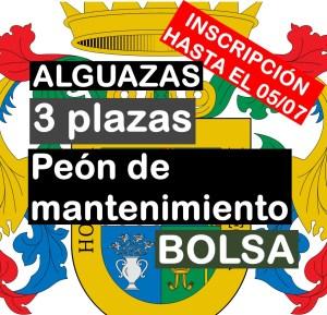 3 plazas de Peón de Mantenimiento y Bolsa en Alguazas