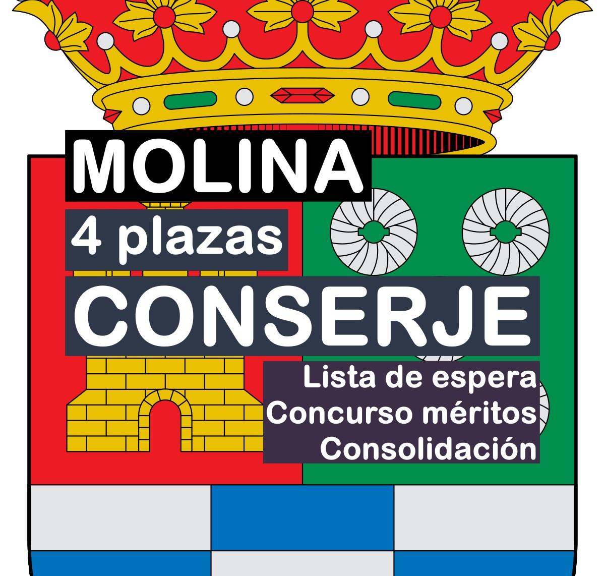 4 Conserjes en Molina