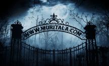 muritala.com gate