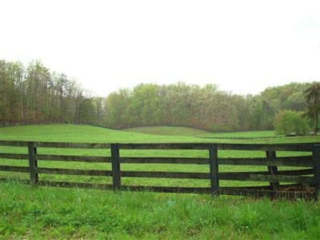 Large farms for sale in Mt. Sterling