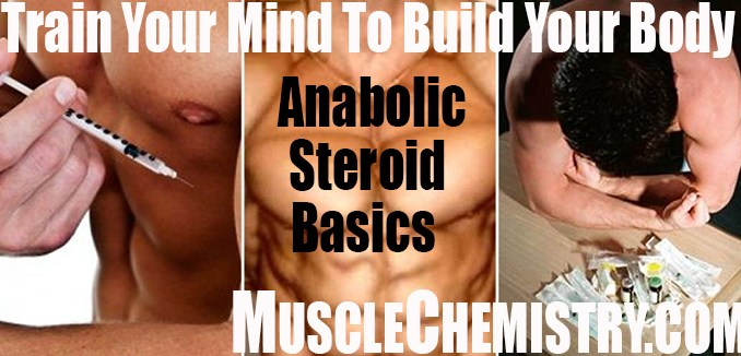Beginners Steroid Cycle