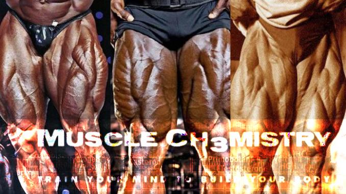 Training Quad Muscle