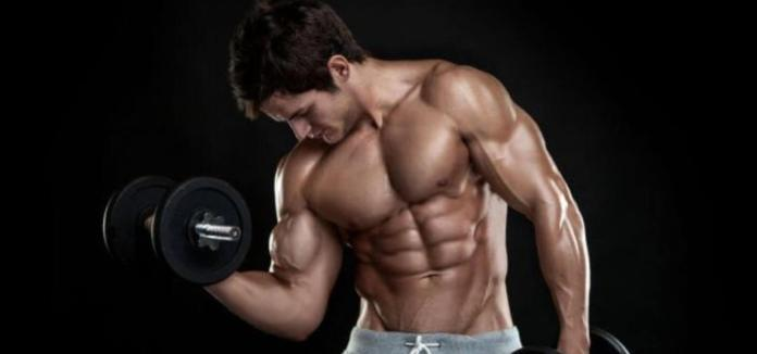 science of muscle hypertrophy