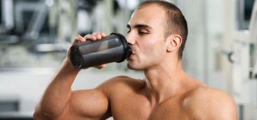 newbie gains muscle