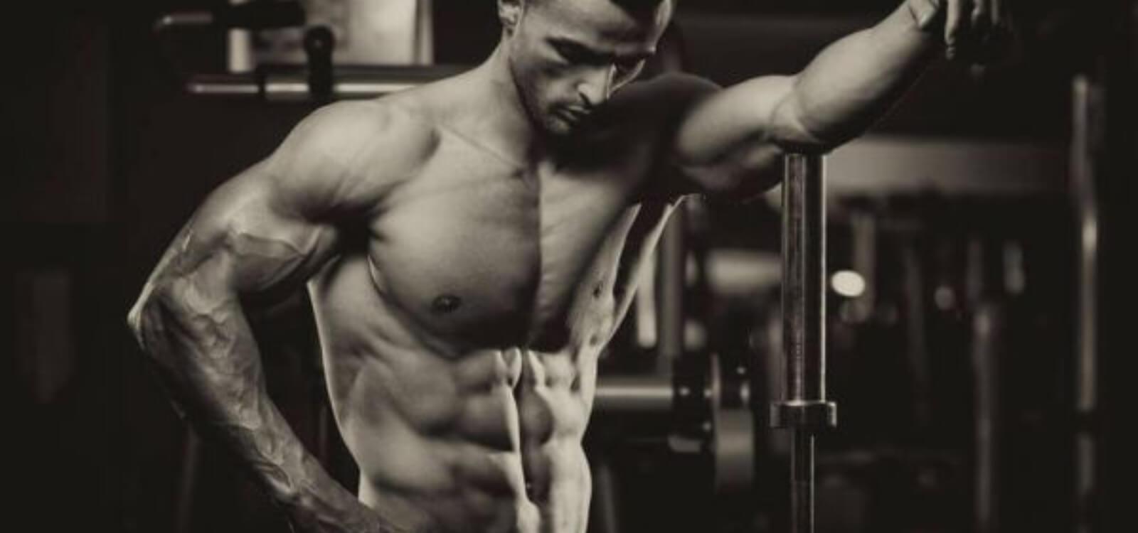 tdee calculator to build muscle