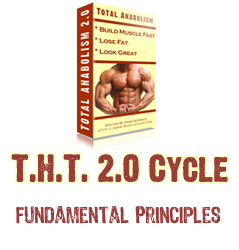 The THT 2.0 Training Cycle – Fundamental Principles (part 2)