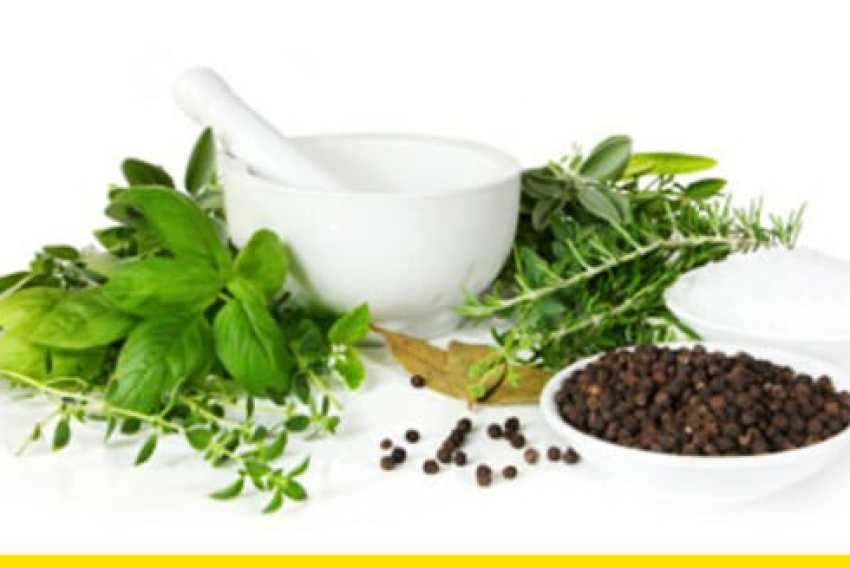 natural herbal remedies for health muscle u0027ou0027 mania