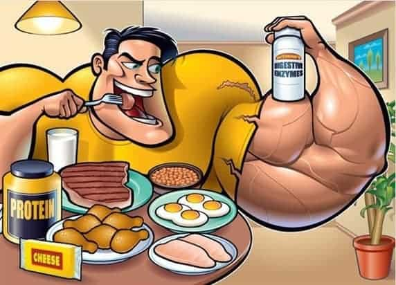 fat from protein