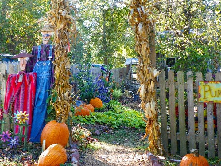Pumpkin Patch Amp Hayrides At The Farm House Ellerslie