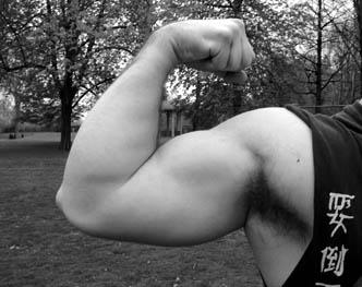 40 cm de tour de bras